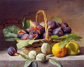 2976 Still Life of figs, walnuts, orange & a lemon
