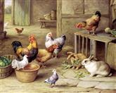 2946 Chickens and Rabbits